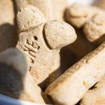 3 Reasons Why Dog Treats Are Used in Training Dogs