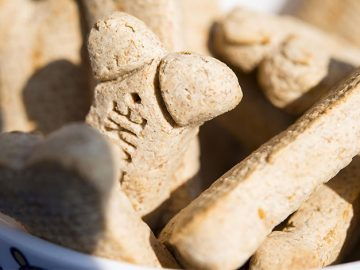 dogtreats 360x270 - 3 Reasons Why Dog Treats Are Used in Training Dogs