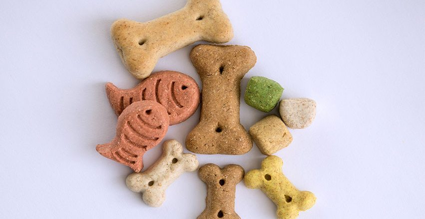 trea 851x440 - 3 Best Dog Treats for Training Puppies - Bully Sticks & Training Treats